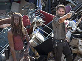 the walking dead8-10